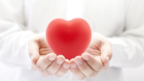 wpid-heart-in-hands.jpg