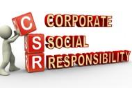 wpid-corporate-social-responsibility.JPG