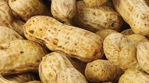 wpid-peanuts.jpg