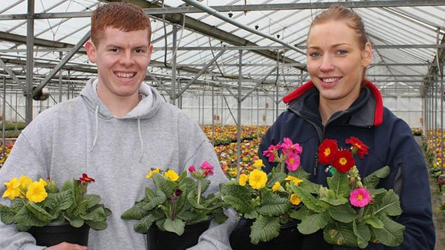 Horticultural apprentices