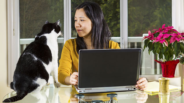Woman with laptop and cat