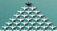 Leadership - flying swans