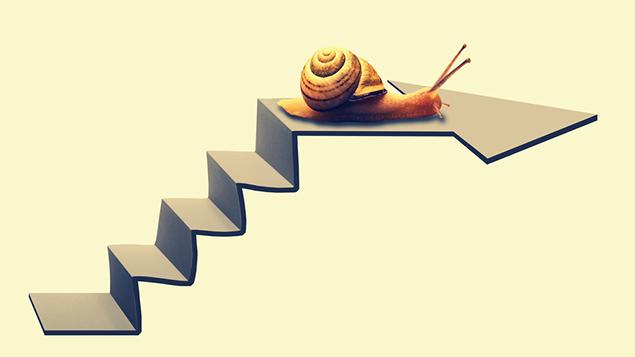 Snail-pace