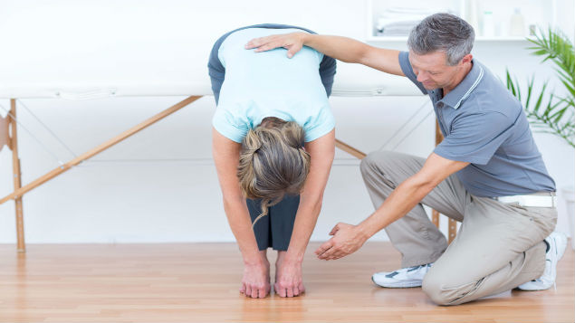 SEQOHS occupational health physiotherapy services
