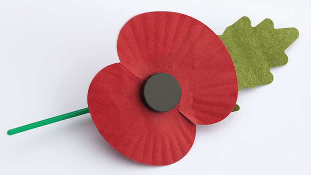 Can employers insist on their staff wearing or not wearing a poppy in the workplace?