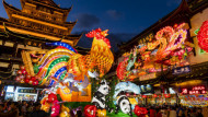 In China, 2017 is the year of the rooster. Photo: Sipa Asia/REX/Shutterstock.