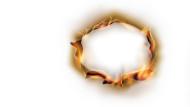 bonfire-brexit-employment-law