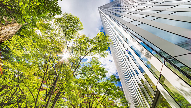 Greening city